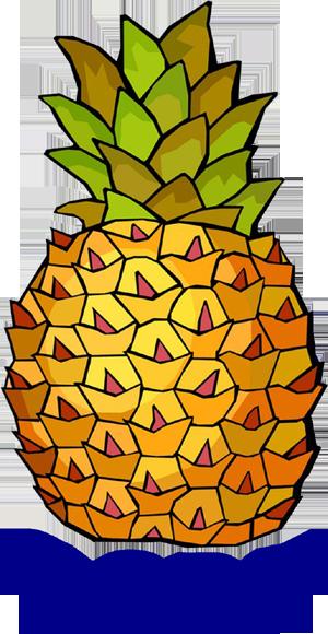pineapple-code.png